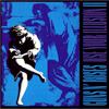 Pochette Guns N' Roses Use Your Illusion II